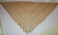 SpinShawl_Comp